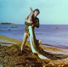 Phil with shark by tail